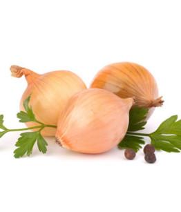 cilantro-onion-570x450
