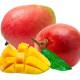 mango-570x450