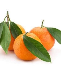 tangerine-570x450
